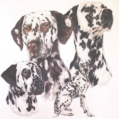 Sporting Mixed Media - Dalmatian by Barbara Keith