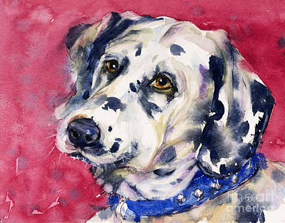 Painting - Dalmatian by Judith Levins