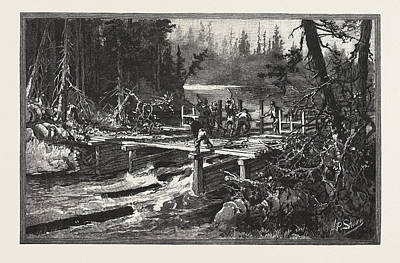 Dam Drawing - Dam On Tuque Creek, Lumbering, Canada by Canadian School