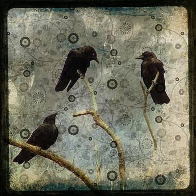 Damask Of Crow Art Print