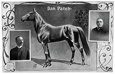 Sturges Photograph - Dan Patch (1896-1916) by Granger