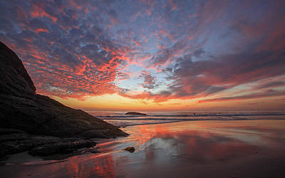 Photograph - Dana Point Reflections by Cliff Wassmann