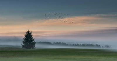 Portland Photograph - Dance In The Clouds by Shenshen Dou