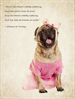 Pug Photograph - Dance Like There's Nobody Watching by Edward Fielding