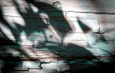 Photograph - Dance Of Shadows On Peeling Paint by Christy Usilton