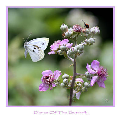 Dance Of The Butterfly Art Print by Martina  Rathgens