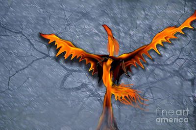 Digital Art - Dance Of The Pheonix by Cheri Doyle
