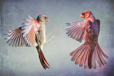 Dance Of The Redbirds Art Print