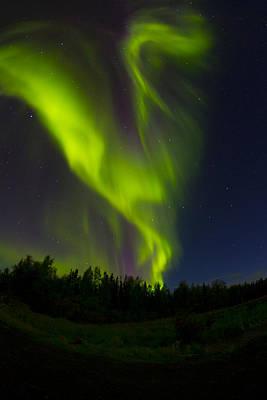 Dance The Aurora Original