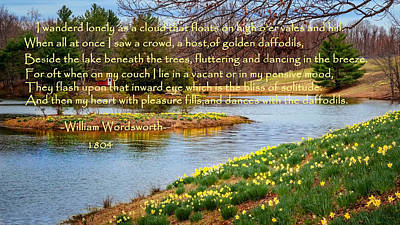 Connecticut Landscape Photograph - Dances With The Daffodils by Bill Wakeley