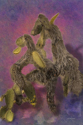 Dancing Cactus Pair In Galapagos Islands Art Print by Angela A Stanton