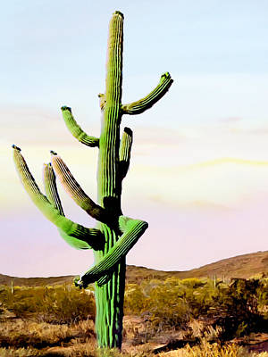 Photograph - Dancing Cactus Sunrise Saguaro National Park by Bob and Nadine Johnston