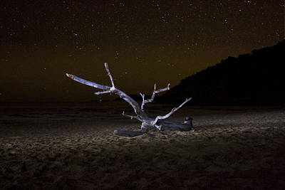 Photograph - Dancing Drifter by Brent L Ander