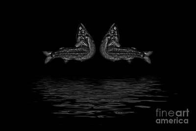 Dancing Fish At Night 2 Art Print