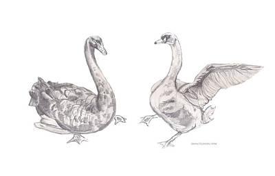 Drawing - Dancing Geese by John Keaton