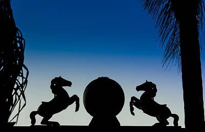 Photograph - Dancing Horses by Carolyn Marshall