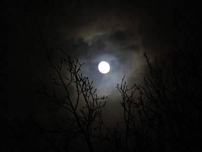 Dancing In The Moonlight Print by Rosita Larsson