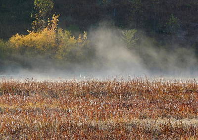 Photograph - Dancing Mist by Wild Thing