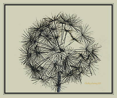 Art Print featuring the photograph Dandelion 6 by Kathy Barney