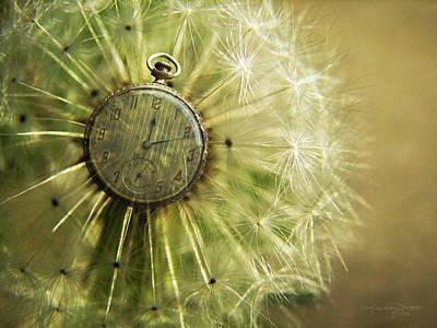 Photograph - Dandelion Clock II by Karen Casey-Smith