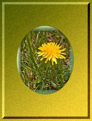 Dandelion Digital Art - Dandelion Daisy by Patricia Keller