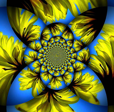 Photograph - Dandelion Kaleidoscope by Sheri McLeroy