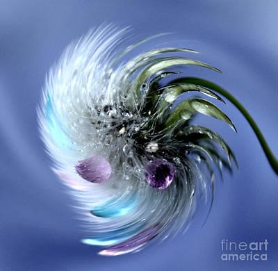 Dandelion Magic Art Print