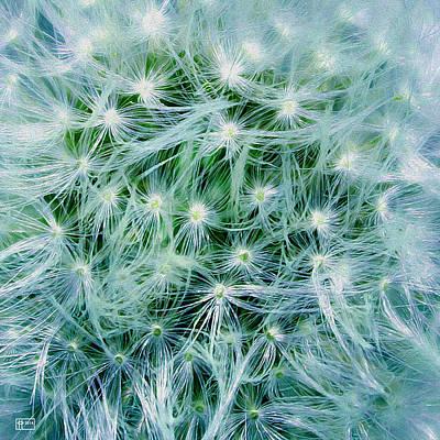 Digital Art - Dandelion Nebula by Jim Pavelle