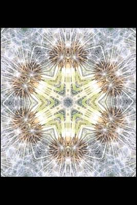 Dandelion Digital Art - Dandelion Wishes by Julia Gatti