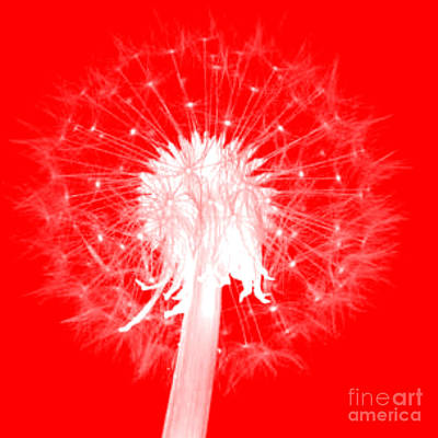 Digital Art - Dandylion Red by Clayton Bruster