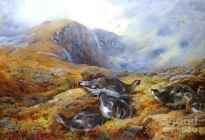 Scotland Painting - Danger Aloft - Ptarmigan  by Pg Reproductions