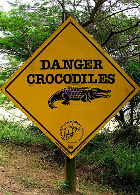 Photograph - Danger Crocodiles by Ramona Johnston