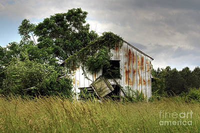 Rusty Tin Roof Photograph - Dangling Barn Door by Benanne Stiens