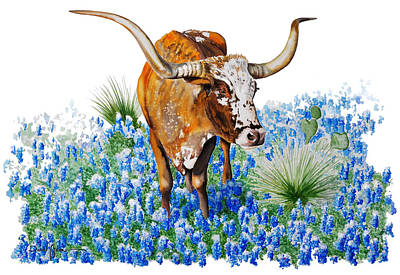 Painting -  Da102 Longhorn And Bluebonnets Daniel Adams by Daniel  Adams