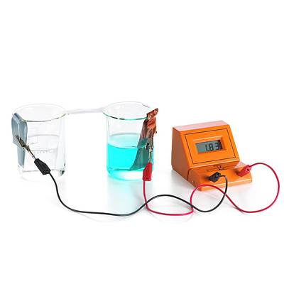 Oxidation Photograph - Daniell Electrochemical Cell by Science Photo Library