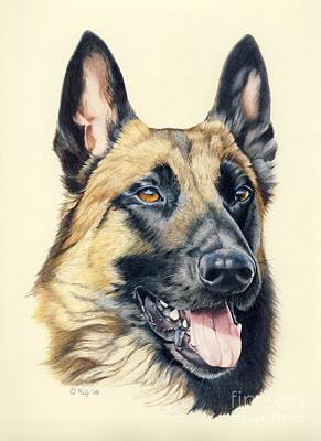Drawing - Danno by Rosellen Westerhoff