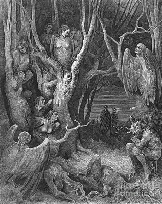Underworld Human Photograph - Dante's Inferno, Suicides And The Harpies by Middle Temple Library