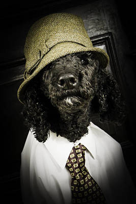 Whimsical Flowers Royalty Free Images - Dapper Dog Royalty-Free Image by Erin Cadigan