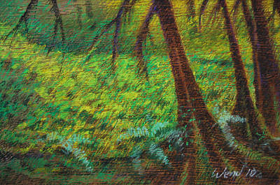 Dappled Forest Print by Daniel Wend