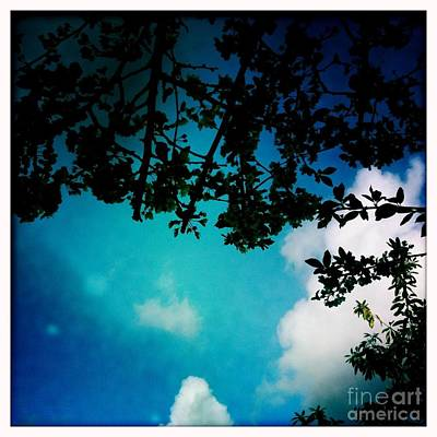 Dappled Sky Art Print