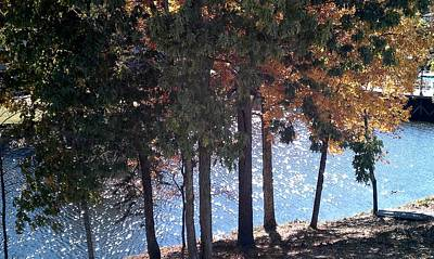 Photograph - Dappled Water by Kenny Glover
