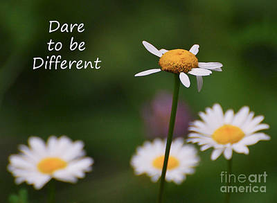 Motivate Photograph - Dare To Be Different by Kerri Farley