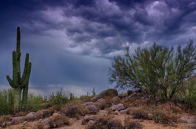 Photograph - Dark Desert Skies  by Saija  Lehtonen