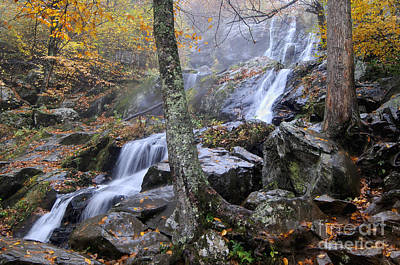 Photograph - Dark Hollow Falls by Jane Axman
