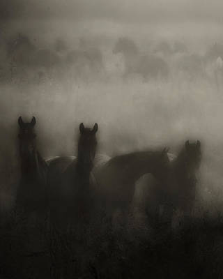 Dark Horse Dreams Art Print by Ron  McGinnis