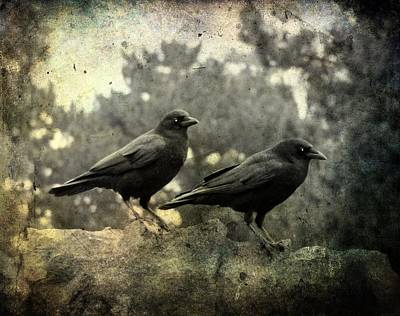 Birds In Graveyard Photograph - Dark Nature by Gothicrow Images
