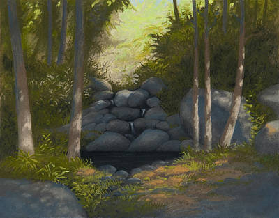 Pastel - Dark Pond by Bruce Richardson