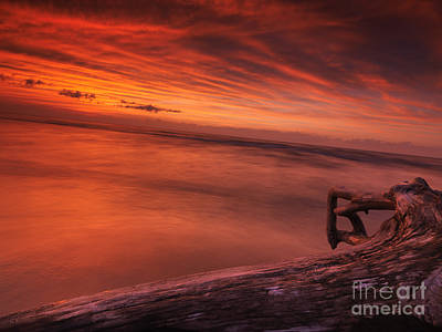 Pinery Photograph - Dark Red Dramatic Sunset Scenery Over Lake Huron by Oleksiy Maksymenko