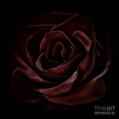 Photograph - Dark Red Rose 1200 by Walt Foegelle