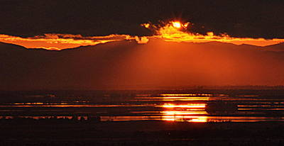 Photograph - Dark Sun by AJ  Schibig